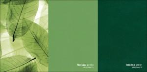 Fine Texture Green